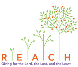 REACH Logo Icon